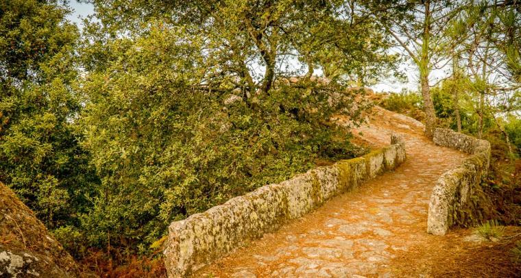 Parque Natural Monte Aloia